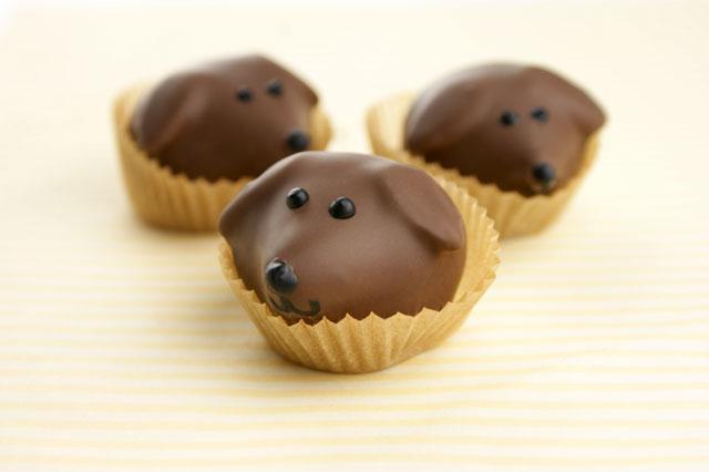 Puppy Truffles Candiquik